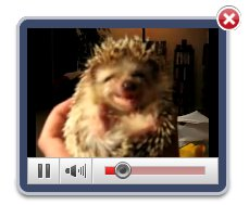 Upload Your Videos Here And Publish Them Jquery Record Video Audio