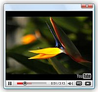 Embed Youtube Video From Url Jquery Jquery Autoplay Video Popup